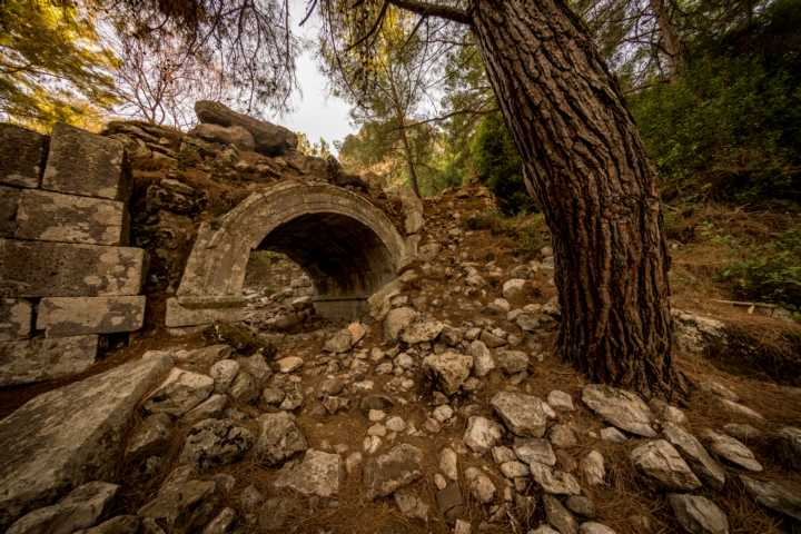 Sightseeing in Olympos: Bridge in the woods